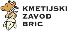 Bric.si Logo