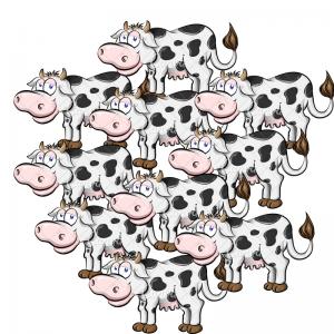 sensehub, spremljanje podatkov celotne črede krav, kmaetijski zavod bric, golias, afimilk