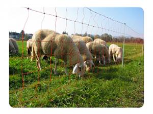 elektromreža za ovce, 90cm visoka električna mreža za drobnico, električni pastir, gallagher slovenija, kmetijski zavod bric